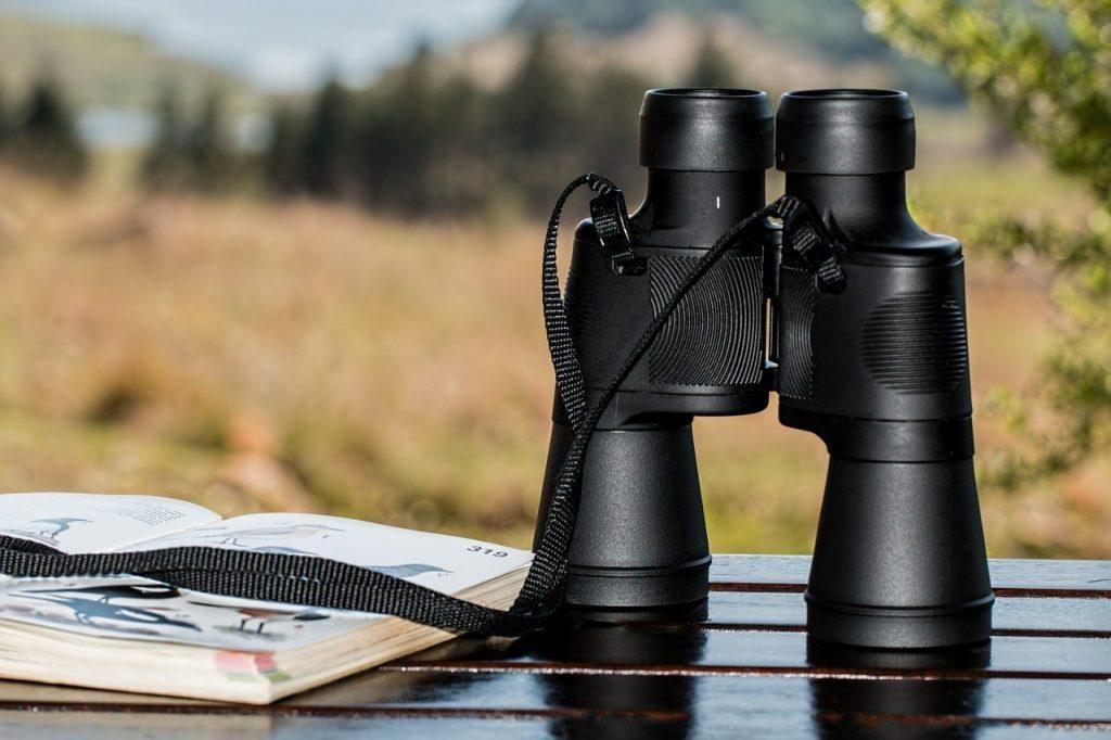binoculars-995779_1280