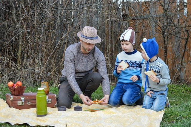 dad-and-sons-picnic