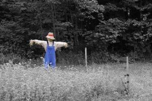black-and-white-scarecrow