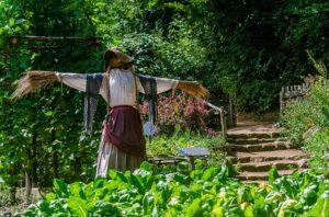 scarecrow-girl-in-garden