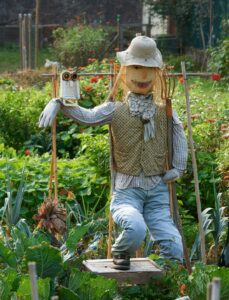 scarecrow-with-owl-on-swing